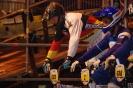 BMX WM in Birmingham 2012_15